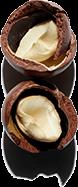 Olio di macadamia biologica