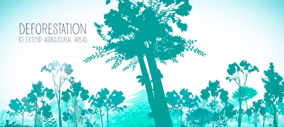 Per comprendere l'agroforestazione