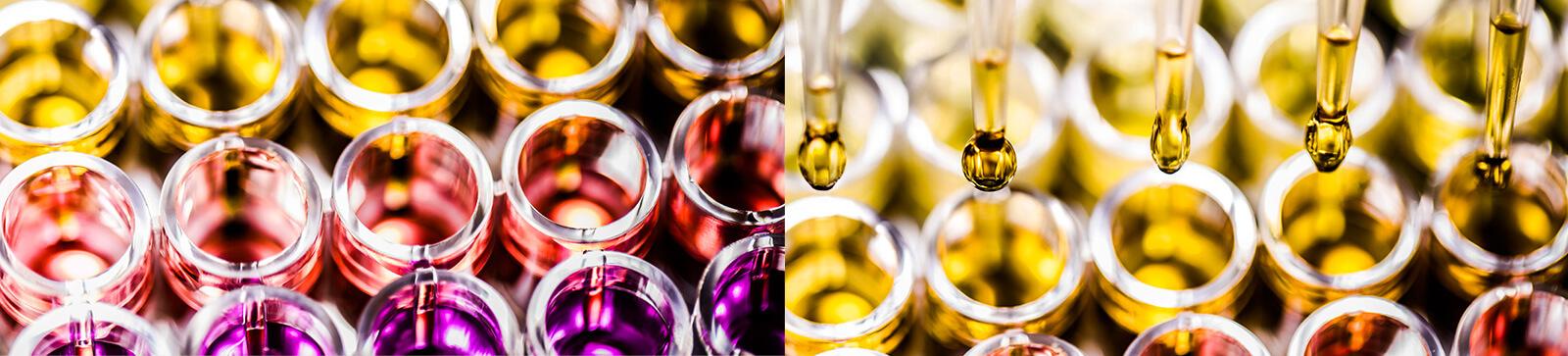 Gli oli sono fatti per la pelle secca.